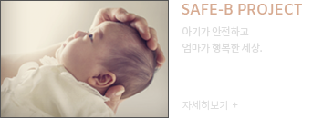 SAFE-B PROJECT